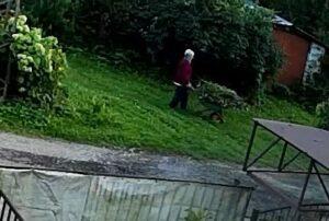 тележки садового мусора сваливаются в реку